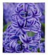 Purple Hyacinth Fleece Blanket