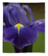 Purple Iris 6 Fleece Blanket