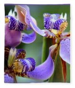 Purple Irises Closeup Fleece Blanket