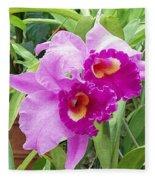 Purple Cattleya Orchids Fleece Blanket