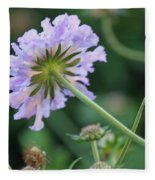 Purple Pincushion Flower Fleece Blanket