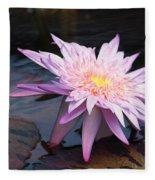 Purple Pink Yellow Waterlily... Fleece Blanket