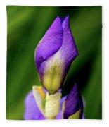 Purple Rain Drop Fleece Blanket