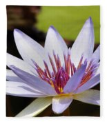 Purple Rhonda Kay Waterlily Above The Pond Fleece Blanket
