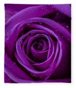 Purple Rose Close Up Fleece Blanket
