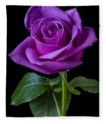 Purple Rose Fleece Blanket