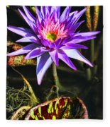 Purple Star Water Lily  By Diana Sainz Fleece Blanket