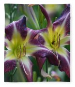 Purple Stargazers Fleece Blanket