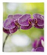 Purple Fleece Blanket