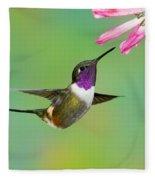 Purple-throated Woodstar Fleece Blanket