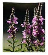 Purple Wild Flowers - 1 Fleece Blanket