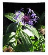 Purple Wildflower Fleece Blanket