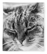 Purring Cat Fleece Blanket