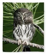 Pygmy Owl Fleece Blanket