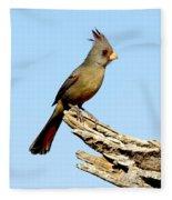 Pyrrhuloxia Cardinalis Sinuatus Female Fleece Blanket