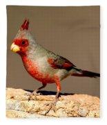Pyrrhuloxia Cardinalis Sinuatus Male Fleece Blanket