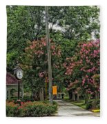 Quaint Park In Demopolis Alabama Fleece Blanket