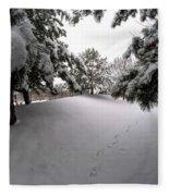 Queen City Winter Wonderland After The Storm Series 0030 Fleece Blanket