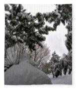 Queen City Winter Wonderland After The Storm Series 0031 Fleece Blanket