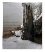 Queen City Winter Wonderland After The Storm Series 0037 Fleece Blanket