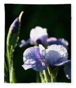 Quenched Overnight Fleece Blanket