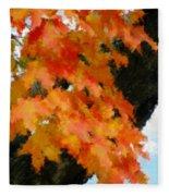 Quick Take On Autumn Fleece Blanket