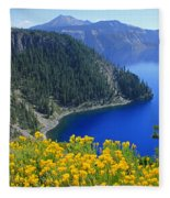 D2m5622-rabbit Brush At Crater Lake Fleece Blanket