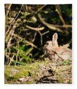 Rabbit In The Woods Fleece Blanket