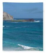 Rabbit Island Panorama Fleece Blanket