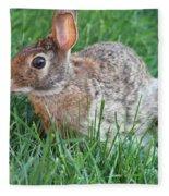 Rabbit On The Run Fleece Blanket