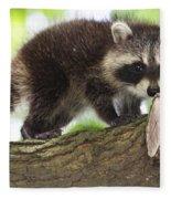 Raccoon Baby Fleece Blanket