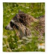 Raccoon In The Meadow Fleece Blanket