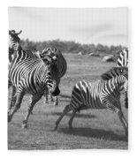 Racing Zebras 1 Fleece Blanket