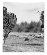 Racing Zebras Fleece Blanket