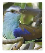 Racket Tailed Roller Fleece Blanket