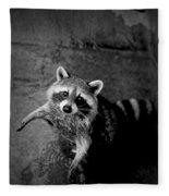 Racoon Bandit Fleece Blanket