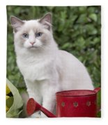 Ragdoll Cat Fleece Blanket