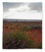 Rain At Monument Valley Fleece Blanket