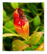 Rain Drops On Colorful Leaf Fleece Blanket