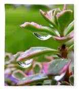 Raindrops On Sedum Fleece Blanket