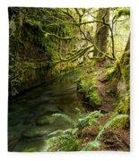 Rain Forest 2 Fleece Blanket