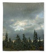 Rain Storm Fleece Blanket