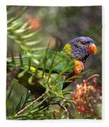 Rainbow Lorikeet Fleece Blanket