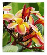 Rainbow Plumeria - 1 Fleece Blanket