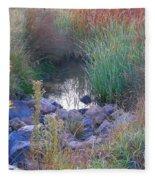 Rainbow Pond Fleece Blanket