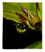 Raindrop Reflections Fleece Blanket