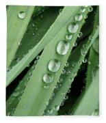 Raindrops On Blades Of Grass Fleece Blanket