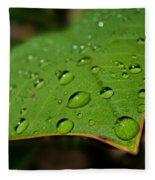Raindrops On Plumeria Leaf Fleece Blanket