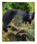 Rainforest Black Bear Fleece Blanket