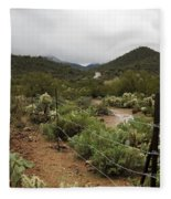 Rainy Desert Fleece Blanket